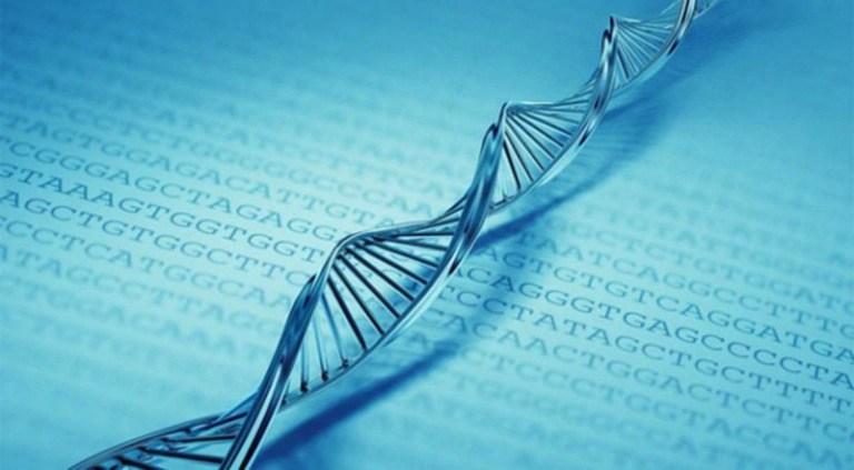Unlocking Big Genetic Data Sets