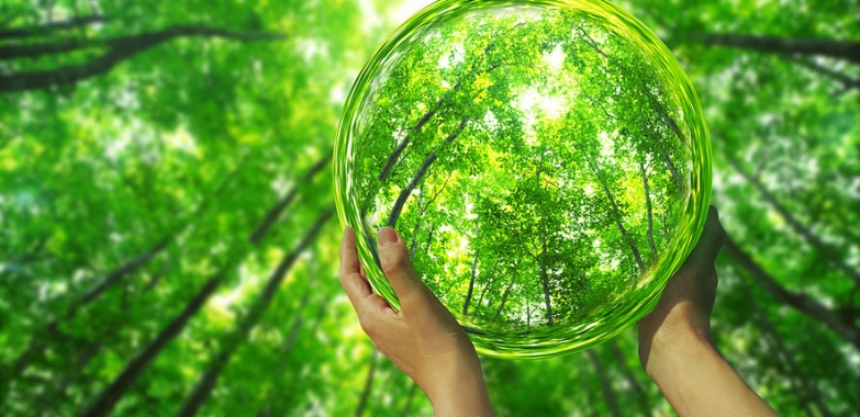 Want to Protect the Planet? Pursue Personal Happiness