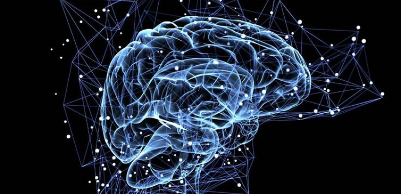 Technologies that are Changing the Way We Understand the Brain