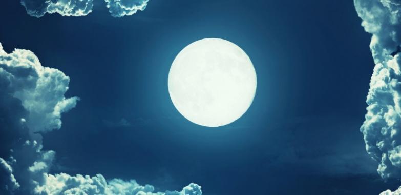 5 Principles Will Help Your Company Make Moonshots Happen